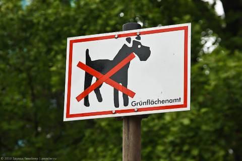 Таблички и знаки «Выгул собак запрещён»