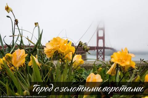 Город с золотыми воротами
