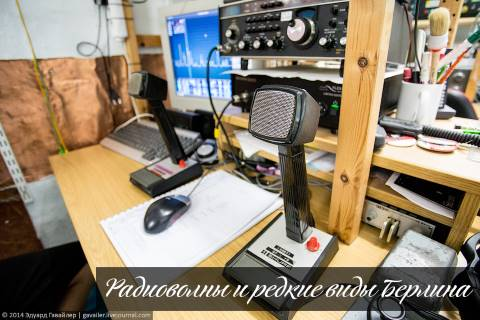 Радиоволны и редкие виды Берлина