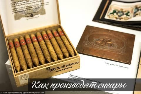 Как производят сигары