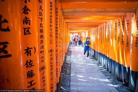 Десять тысяч алых ворот под Киото