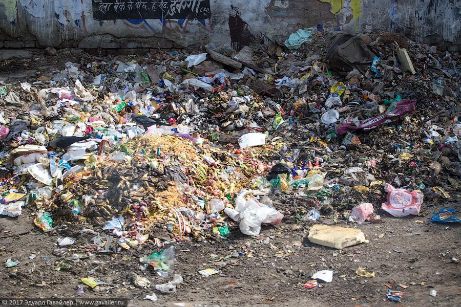 Индия — страна мусора