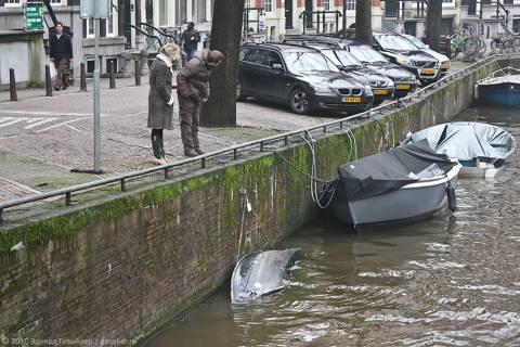 Прогулка по Альстеру в Амстердаме