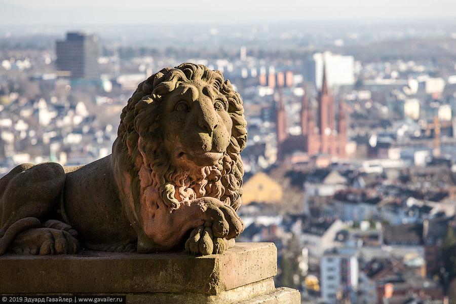 Лев на фоне Висбадена