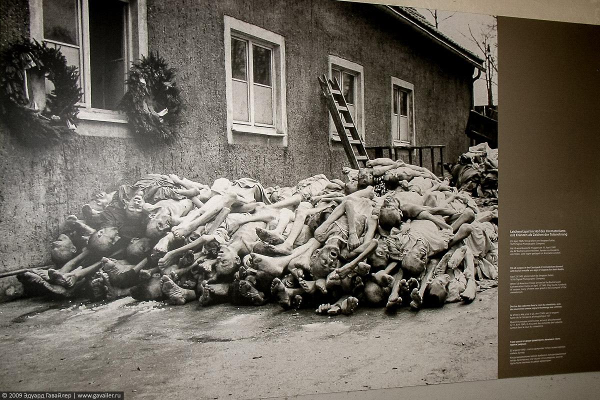 Гора трупов в концлагере Бухенвальд