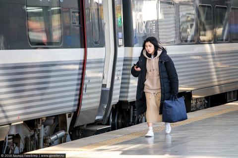 Поезд в Пусан и последний оплот сопротивления