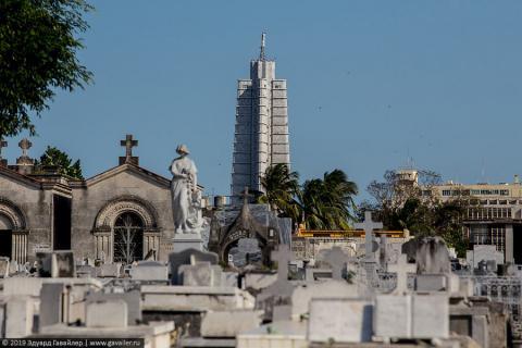 Гавана с высоты полёта красноголового грифа